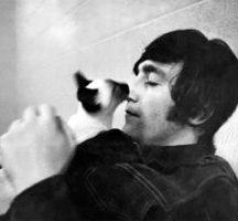 Lennon-Cat